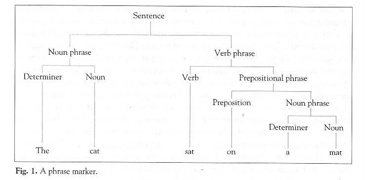 chomskys theorie der universalgrammatik